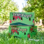 """Most people reach into the supermarket fridge and pull out a bag of apples without much of thought. Where was it grown? How did it get from the tree into a bag? How did the bag end up on the shelf? As the largest exporter of South African apples and pears, Tru-Cape Fruit Marketing, a business wholly owned by its growers at Ceres Fruit Growers and Two-a-Day in the Elgin/Grabouw region, has the answers. With negative price pressure from supermarkets around the world, one of the only ways Tru-Cape can maximise the value back to the grower is by trimming costs wherever possible. While incredibly complex, the logistics - the route how fruit gets from the farm to the packhouse onto the shelf - is now largely handled in-house at Tru-Cape and in partnership with LINK, a supply-chain management company that is owned by the growers of Tru-Cape. Christine Bönker, Tru-Cape's Logistics Manager explains: """"We can load on any given day around 28, 40-foot refrigerated containers at Two-A-Day in Grabouw alone, each weighing around 30,000kg when fully loaded. We use nine different shipping lines to export our fruit from all four of the main ports in South Africa: Coega, Port Elizabeth, Cape Town and Durban. """"In the busiest weeks this year, we have shipped more than 600, 000 cartons of fruit which will arrive in 105 countries around the world. In a standard container we can place approximately 1176 cartons on 21 pallets. Each standard apple carton weighs 18.25kg so you know that's a lot of apples. Last year Tru-Cape shipped upwards of 5800 containers around the world which, to place it in perspective, is an average of 15 containers every day of the year. This year we have reached a monumental milestone as we have already shipped more than 63% of last year's volumes in less than half of 2021."""" Bönker says that to reach London Gateway, one of the major ports for the United Kingdom, fruit will be on the sea for upwards of two weeks with the aim to be on the shelves by week four after ship"""